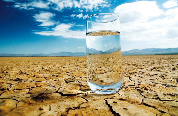 agua, hidratacion, beber agua, deshidratacion, hipovolemia, el comidista, nutricion celular, greenology