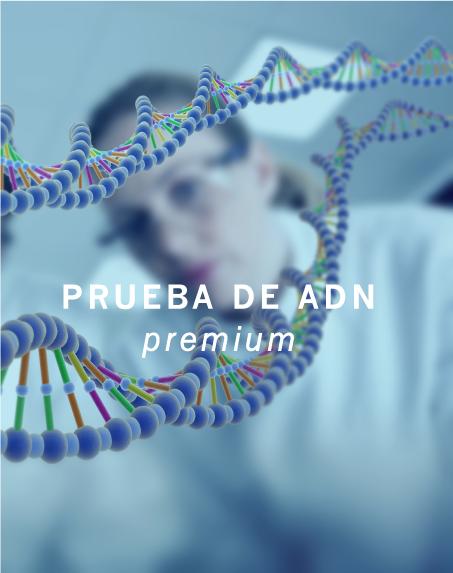 TIENDA_PREMIUM