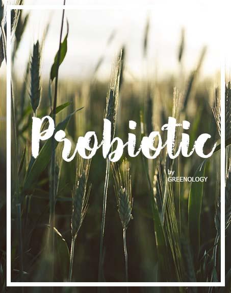 DETOX probiotic